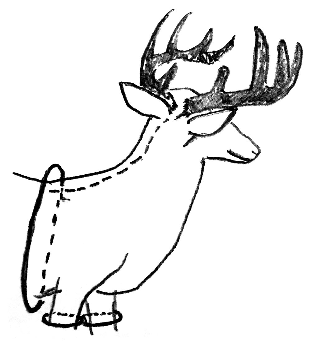 skitse-hjort2